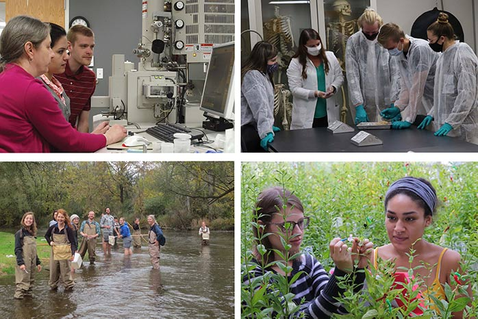 Groups of students doing lab and field work