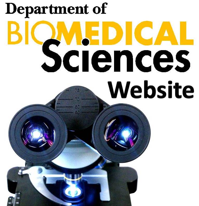 BMS Dept Website button