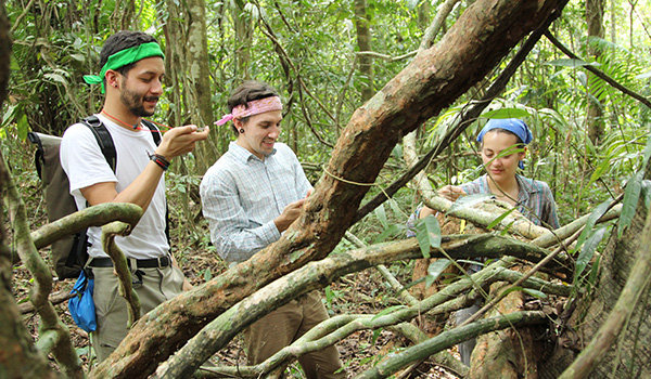 Photo of students in Panama jungle conducting research