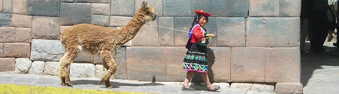 Young girl with Llama