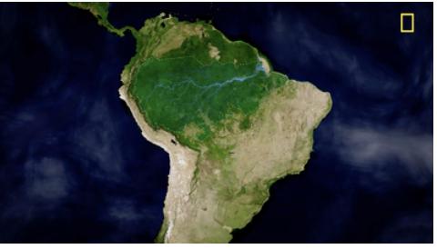 National geographic amazon interactive curriculum center for latin national geographic amazon interactive curriculum gumiabroncs Image collections