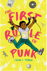 The First Rule of Punk book image