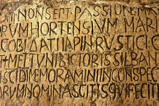 Classical Latin Language and Literature