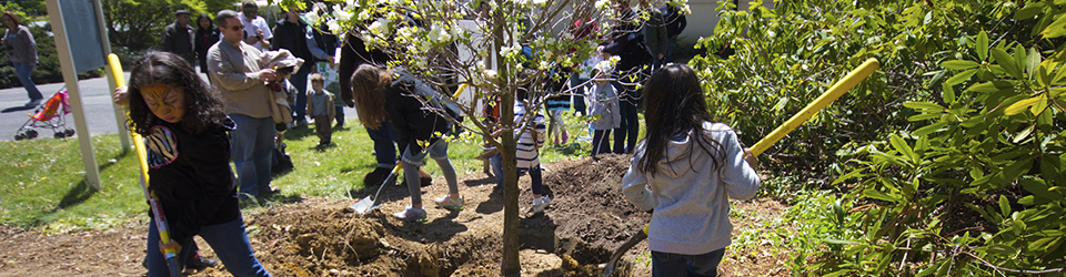 Children and adults in the community helping to plant trees.