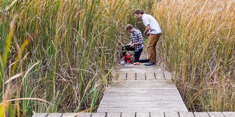 Two students on boardwalk in marsh