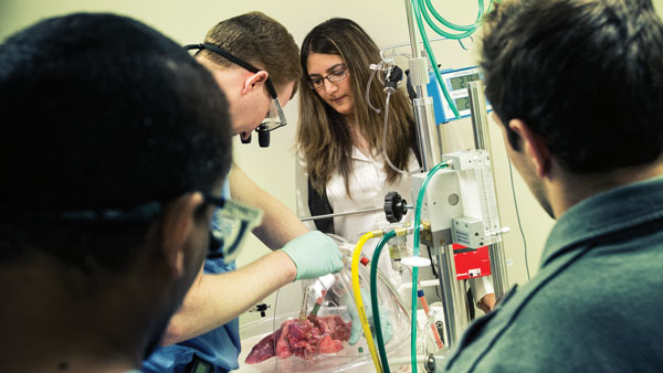 Students in the lab of Dr. Mahsa Ranji perform an optical biopsy.