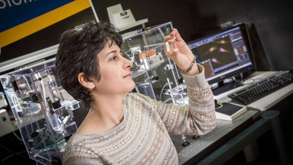 Ph.D. student and researcher Zahra Ghanian in the photonics lab.