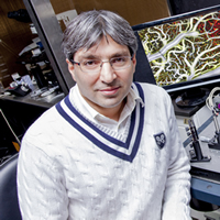 Ramin Pashaie, Associate Professor, Electrical Engineering