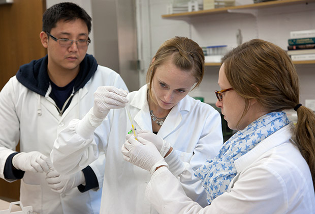 Three Biomedical Sciences students conduct an experiment in a laboratory using a pipette and a liquid sample.