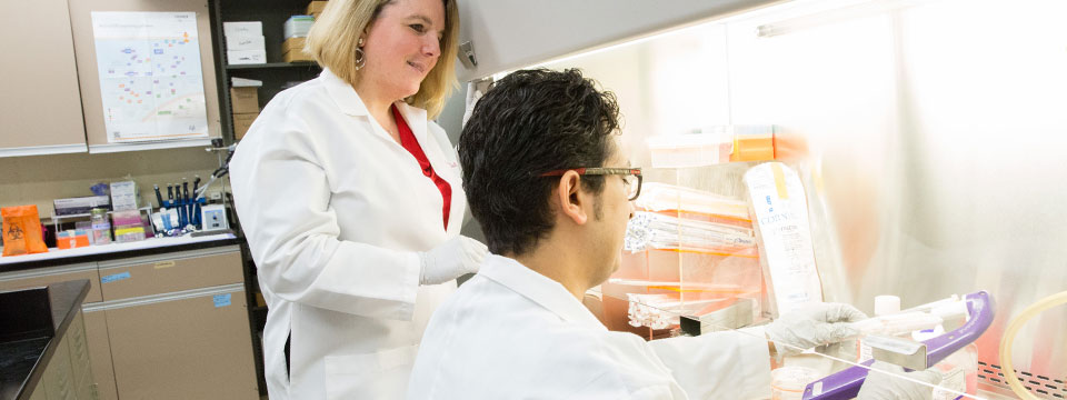 Assistant Professor and Prostate Cancer Lab Director, Jennifer Doll, observes as a graduate student conducts research on the molecular pathways of PEDF suppression by obesity in prostate cancer cells.