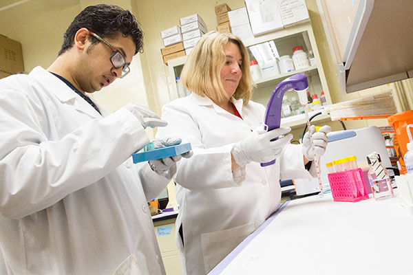 Associate Professor and Prostate Cancer Lab Director, Jennifer Doll, observes as a graduate student conducts research on the molecular pathways of PEDF suppression by obesity in prostate cancer cells.