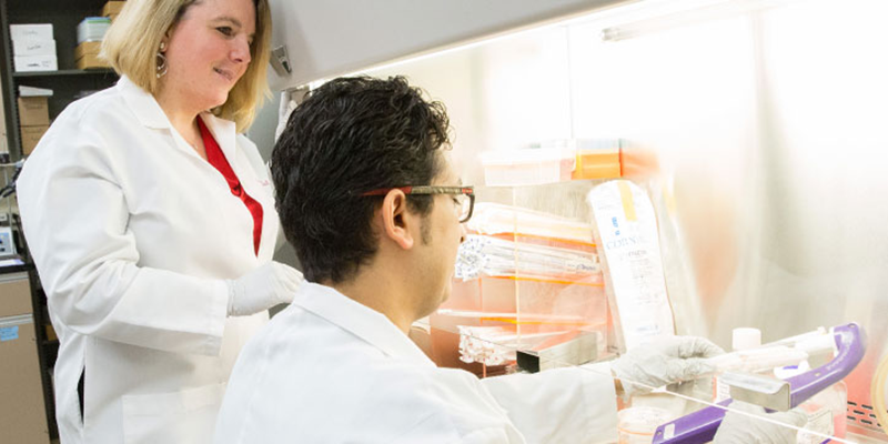 Two researchers working in the prostate cancer lab
