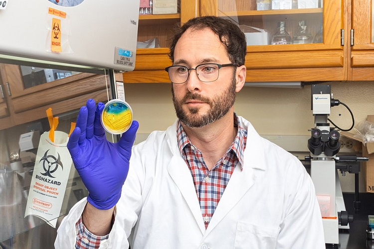 Prodessor Troy Skwor holds up a very colorful Petri dish.