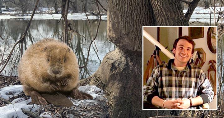 beaver at gnawed tree / Max Rock headshot