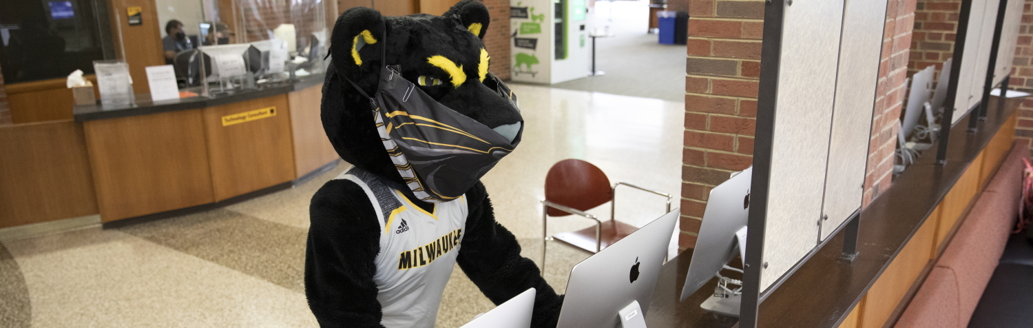 photo of Pounce using computer at UWM Golda Meir Library