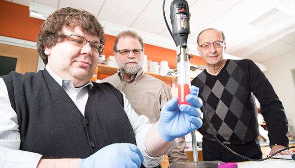 Jeremy Larson (left) grinds a sample to test for hormone production with his advisers Michael Carvan, associate professor of freshwater sciences, and Reinhold Hutz, professor of biological sciences. The three have investigated the health effects of gold nanoparticles inside living cells. (Photo by Troye Fox)