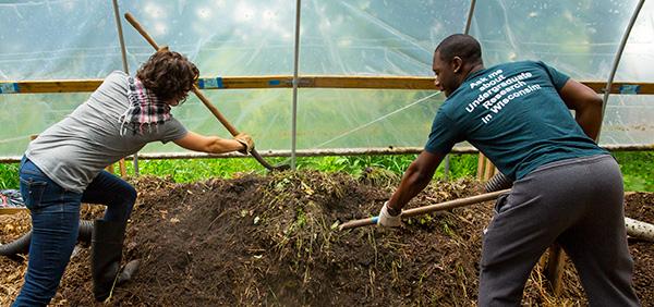 "The ""hoop house"" near the UWM gardens holds campus food waste that becomes compost. (UWM Photos by Derek Rickert)"
