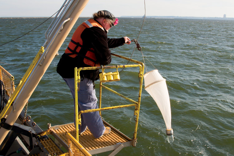 Russell Cuhel gathers water samples.
