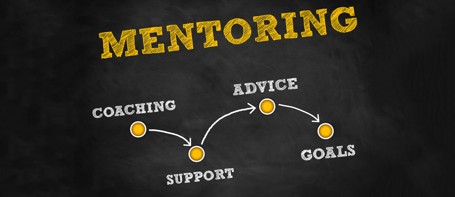 Graphic that outlines how mentoring works