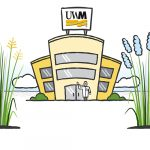 Cartoon illustration of a building with a UWM sign on top and a researcher waving out front with switchgrass in the foreground.