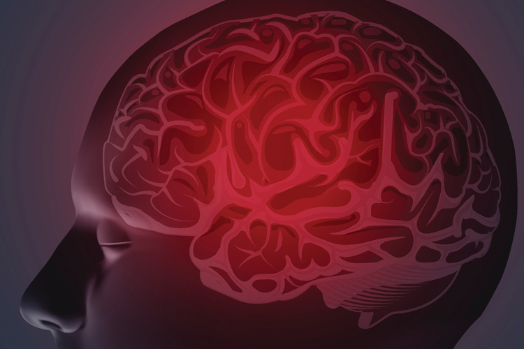 Graphic that shows a brain inside a human head