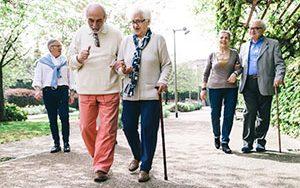 Senior citizens walk in a park