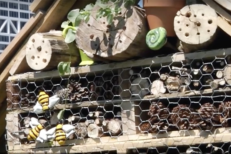Close up of an insect hotel which is made of wood and stuffed with pinecones.