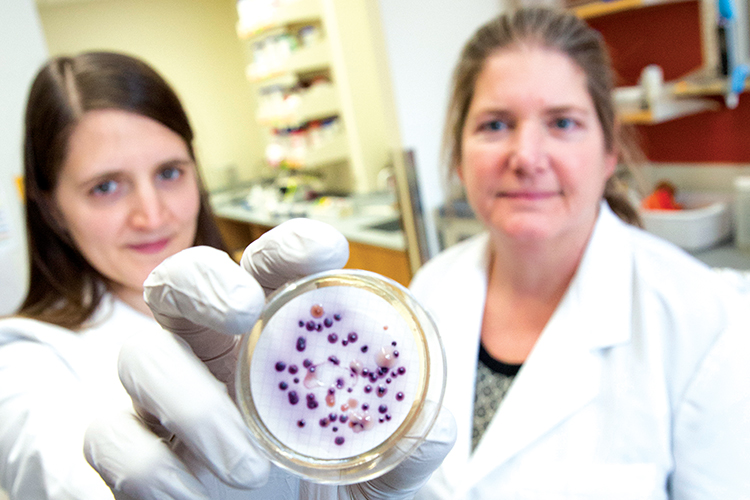 A graduate student and professor hold up a container with bacteria in it.