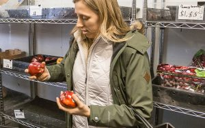 Shoppers select food at a mobile grocery store