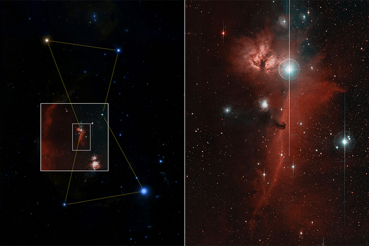 Two images of the sky show Orion and the Horsehead Nebula.