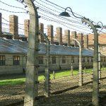 Photo of barbed wire at Auschwitz.
