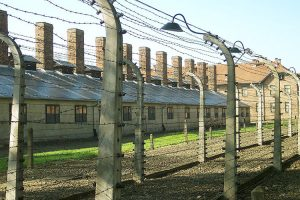 Photo of barbed wire at Auschwitz.