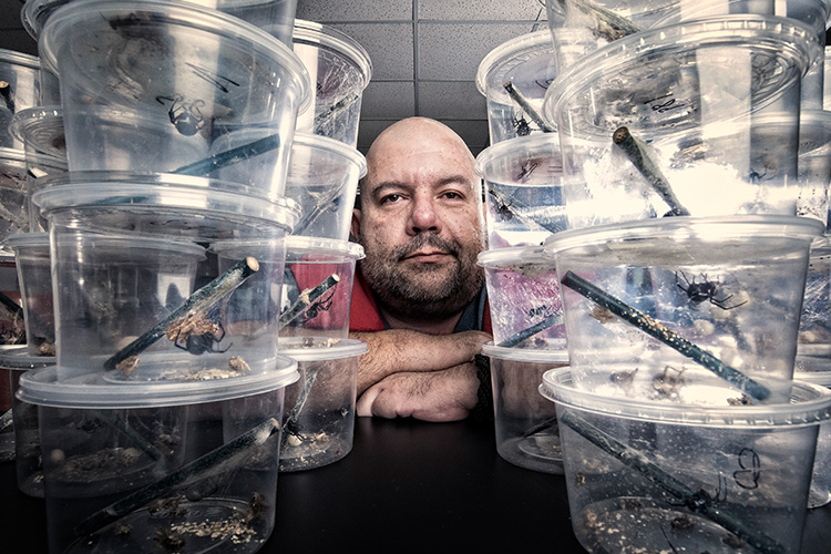 Rafa Rodriguez stands behind containers holding spiders.