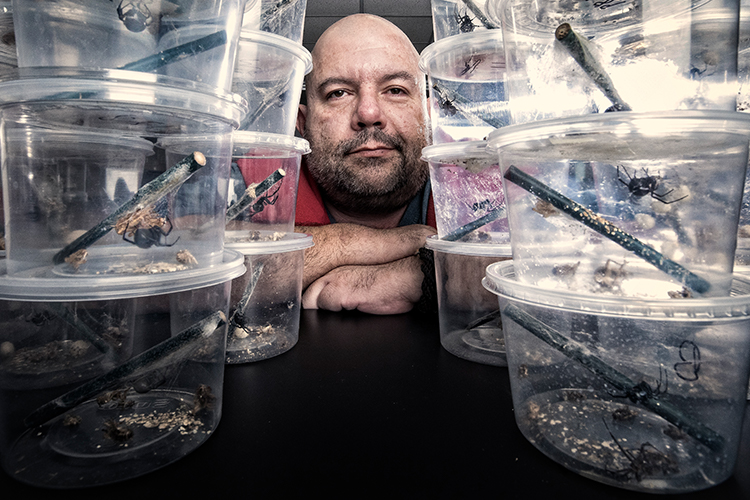 Picture of researcher with containers of spiders