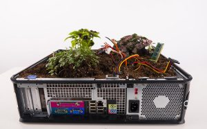 The shell of a computer is filled with dirt and plants.