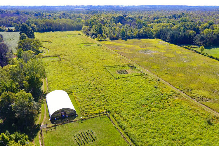 Drone shot of UWM Field Station and landscape