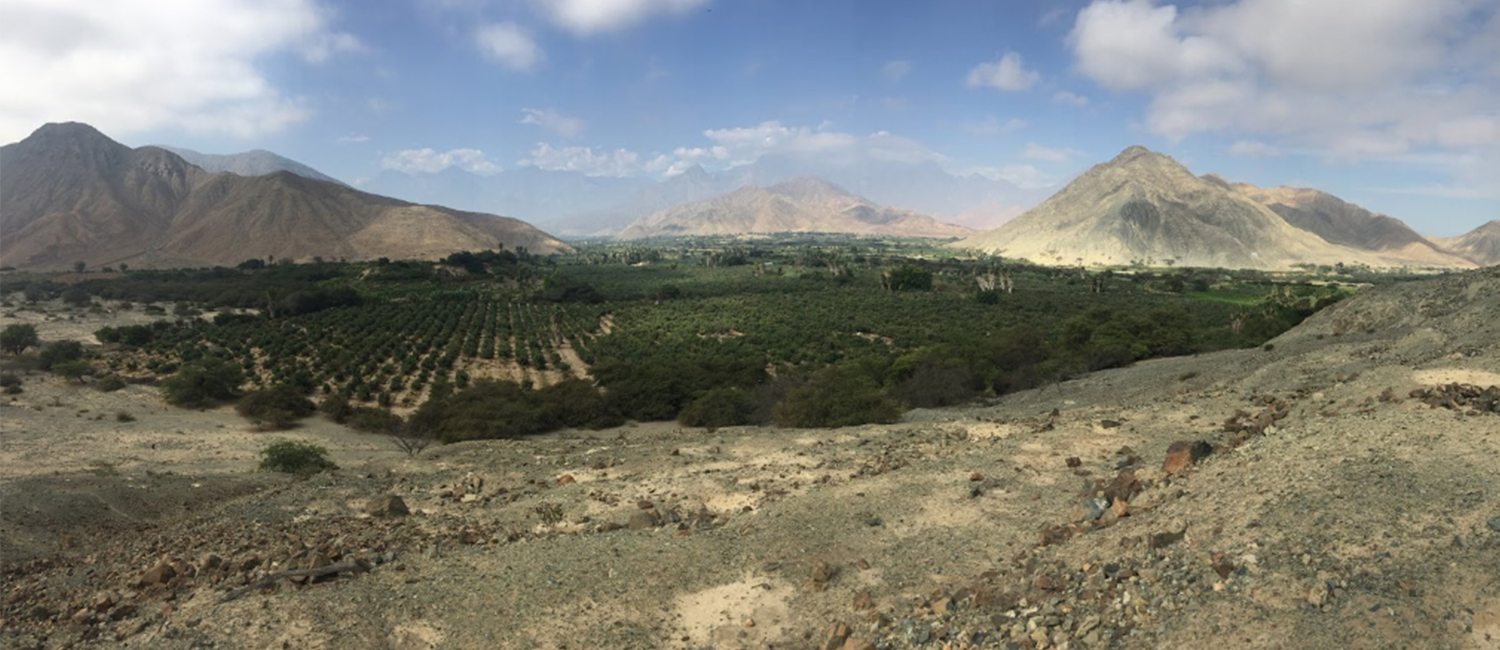 Landscape view of agricultural field next to ancient ruins in Peru.