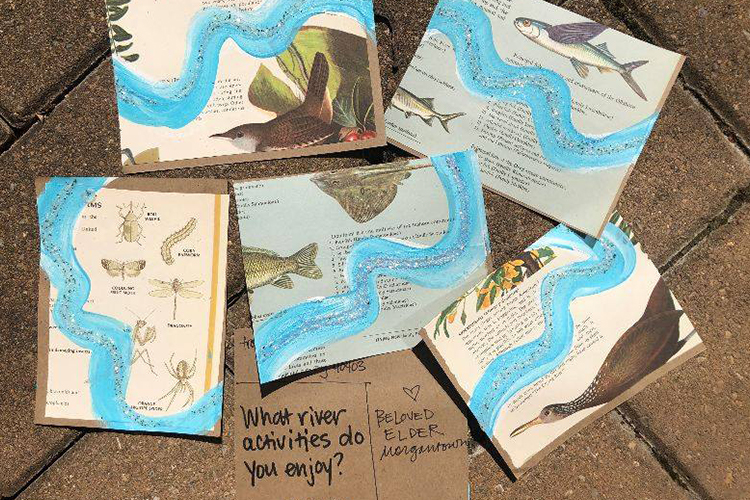 Five postcards featuring a hand-drawn river illustration above a question prompt