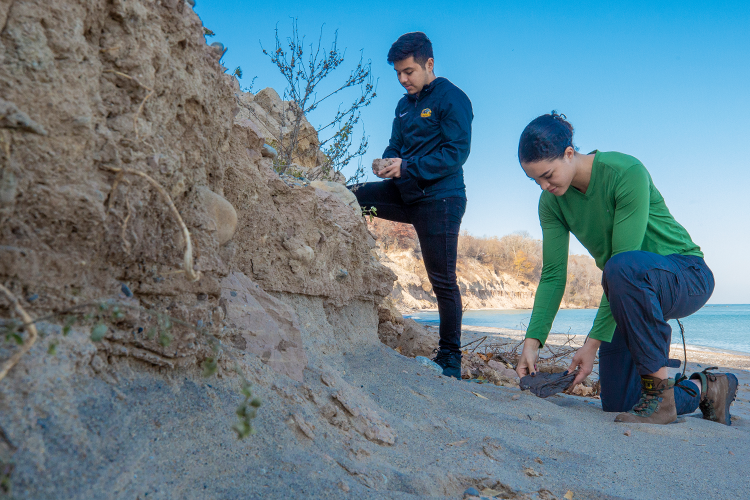 Two geoscience undergrad researchers on beach looking at rocks and fossils