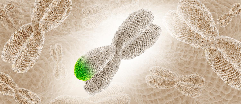 Photo illustration of a chromosome.