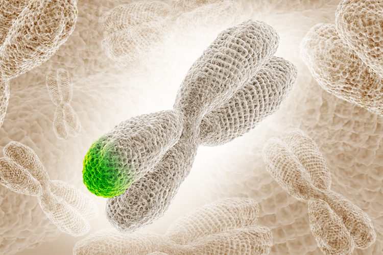 Photo illustration of a chromosome