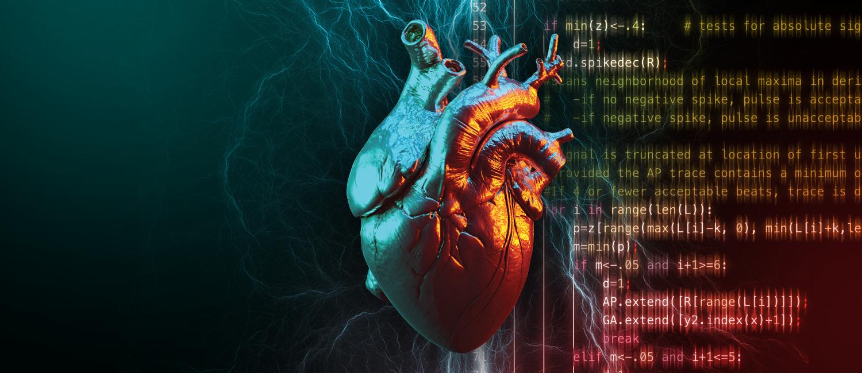 Photo illustration of a human heart