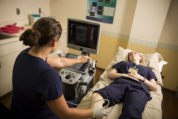 DMS student Jenni Holmes practices using the ultrasound transducer. Ultrasound can be used to examine a range of soft tissues all over the body.