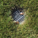 Photo of a lawn drain installed in Milwaukee Idea Home backyard