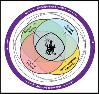Venn diagram demonstrating the intersection of various rehabilitation related professions in the context of ITIP2